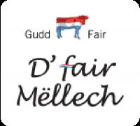 500_logo-mellech